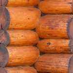wood-log-closeup