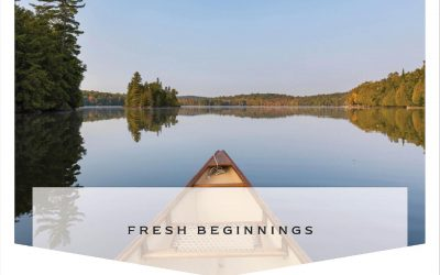 Fresh Beginnings